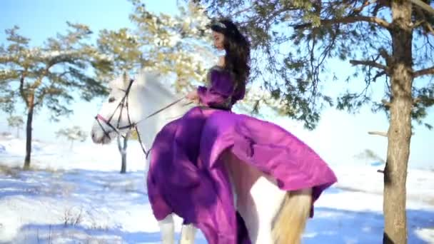 beautiful woman on a white horse in winter