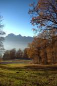 Lovely autumn mood landscape in Triesenberg in Liechtenstein 18.11.2020