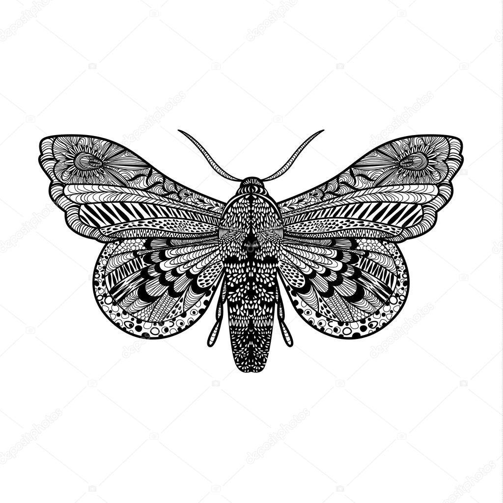 Hand-gezogene magische Schmetterling — Stockvektor © VectorStory ...