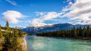 Athabasca River from the Bridge of Maligne lake Road