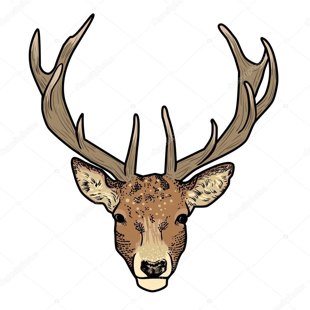 cartoon deer head with antlers isolated stock vector jkazanceva rh depositphotos com cartoon deer head step by step cartoon deer head images