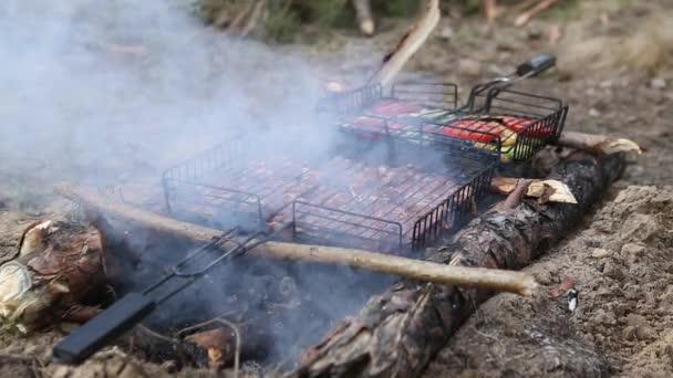 Rozmanité chutné grilované maso se zeleninou po uhlí na grilování