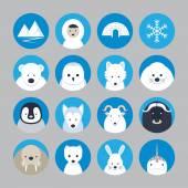 Fotografia Set di icone piane di animali artici