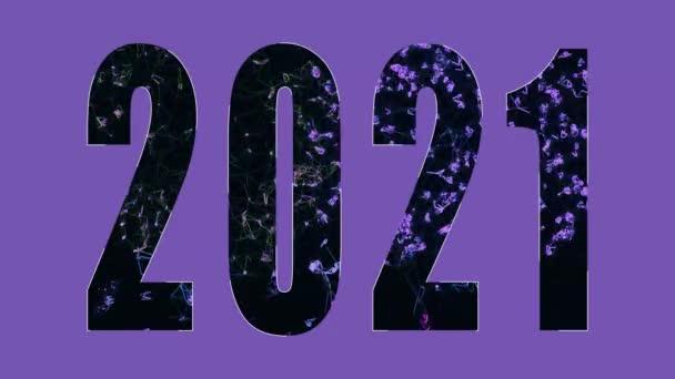 2021 Novoroční oslava 4K animace. Abstraktní číslice ohňostroje pohyb pozadí s částicemi. Silvestrovská pohlednice.