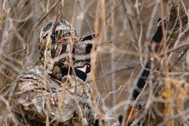 Hidden hunter in shrubs
