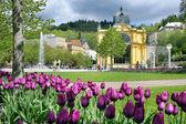 Zpívající fontána, Lázně Mariánské lázně, Česká republika