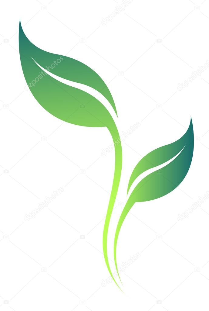 Vector  stylized tea leaf silhouette isolated on white