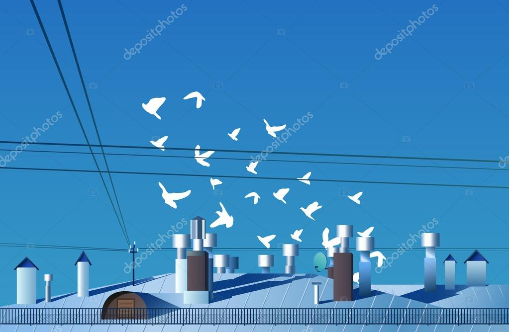 Flock of birds flies over the roof