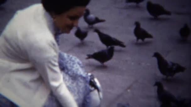žena kojí městských holubů