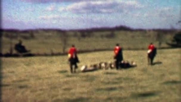 Koně jezdecké liška loví pack psi