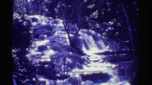 relaxaci v přírodě, sledování vodopád v lese