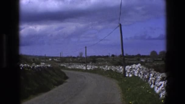 winding road and cows in fields