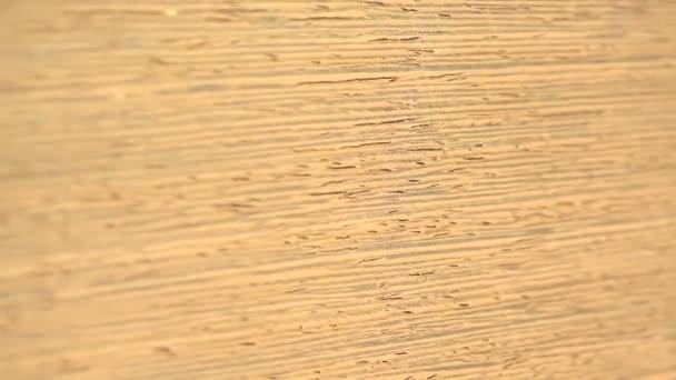 Anigre Wood background