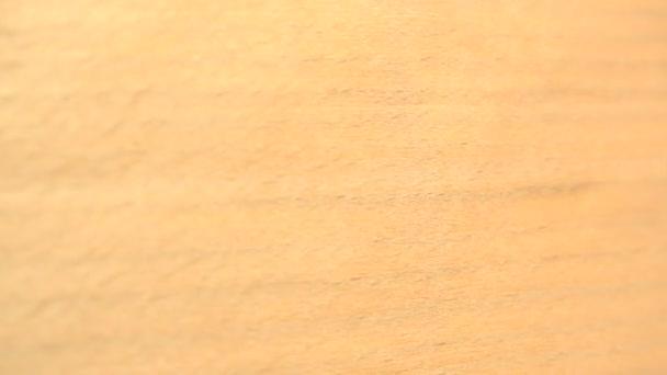 Anigre dřeva pozadí