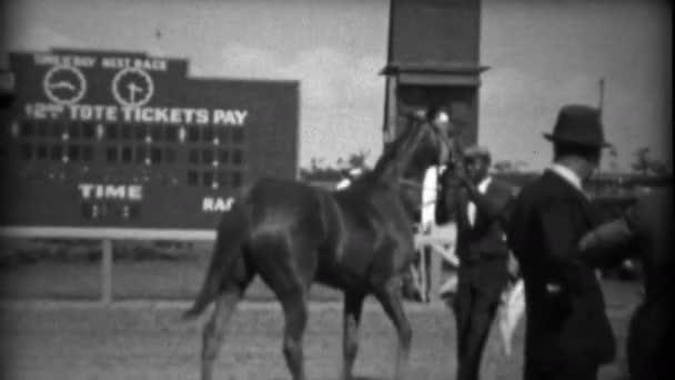 Mann hantiert mit Pferd bei Rennen