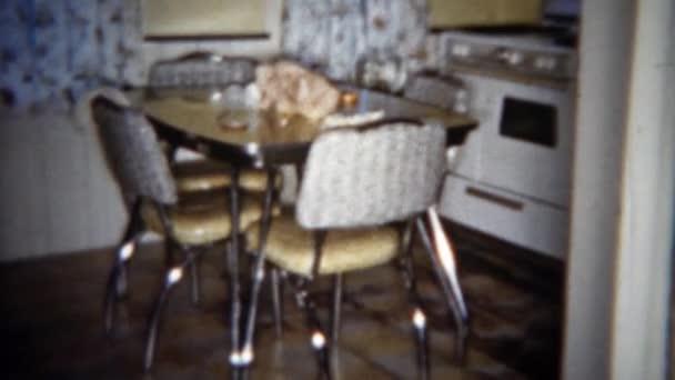 retro styl kuchyňský sporák a lednice