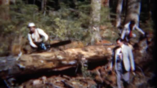 podnikatelé navštivte strom protokolování dřevorubec