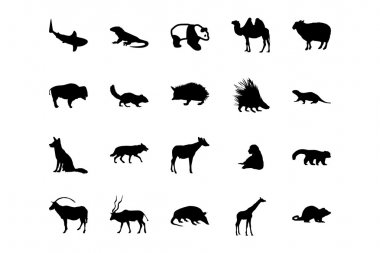 Animal Vector Icons 3