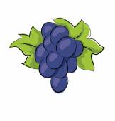 Photo Grapes Hand Drawn Vector Icon