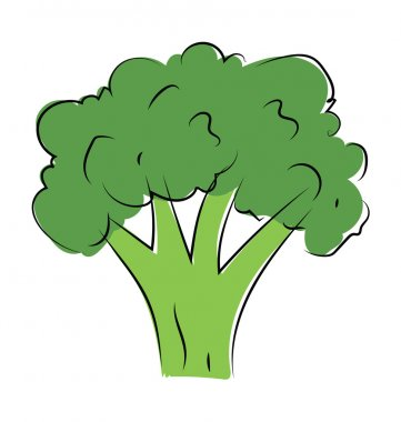 Broccoli Hand Drawn Vector Icon