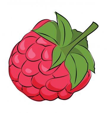 Raspberry Colored Sketchy Vector Icon