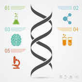 Photo DNA infographic
