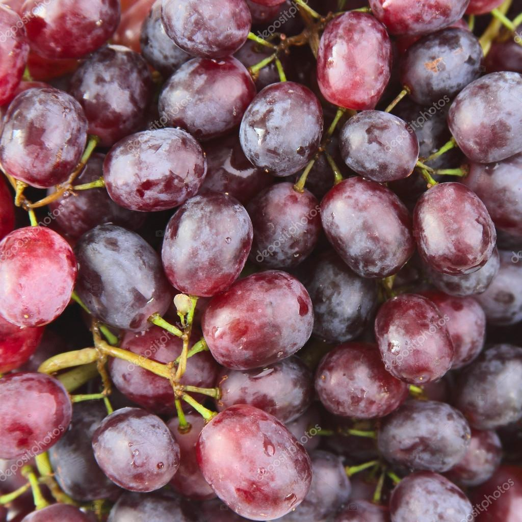 Red grape with water drops