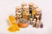 pogány és a boszorkány is használt gyógynövény természetgyógyászat kiválasztása
