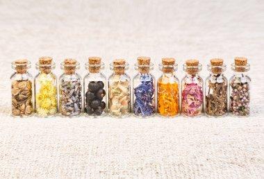 Healing herbs in glass bottles, herbal medicine.
