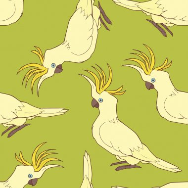 Cockatoo seamless pattern