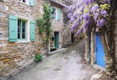 Dorf der Provence: kaskadierende lila Glyzinien-Rebe