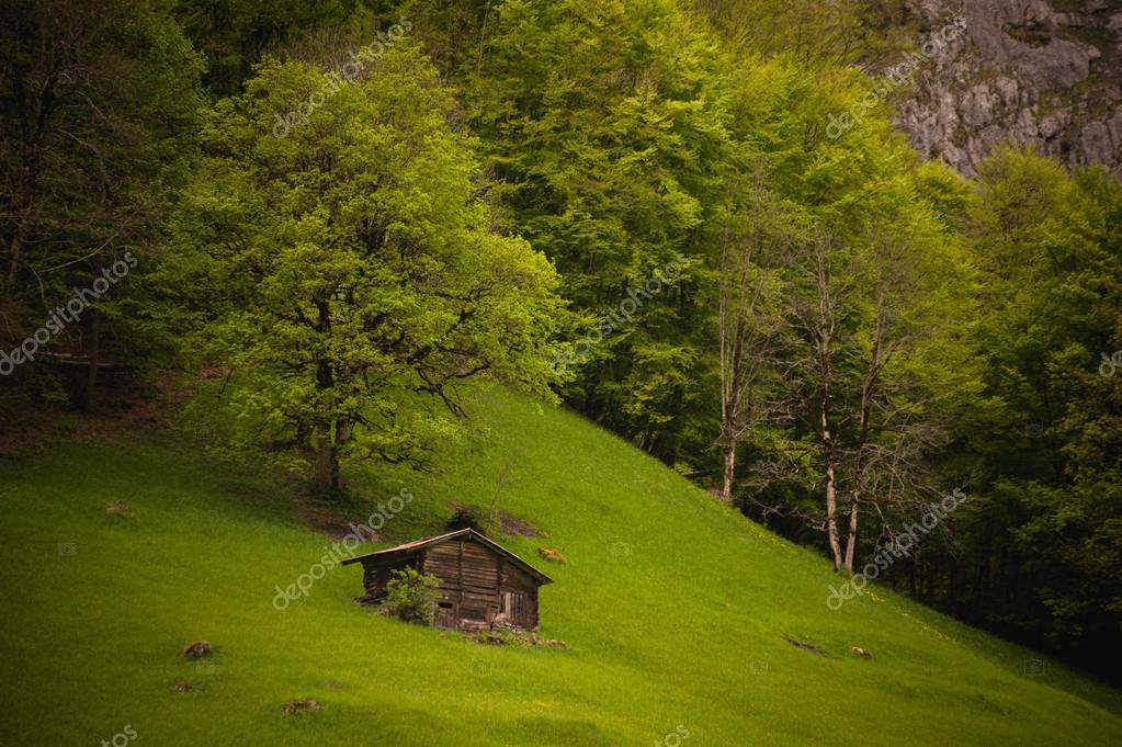 Old wooden hut near the mountain and forest