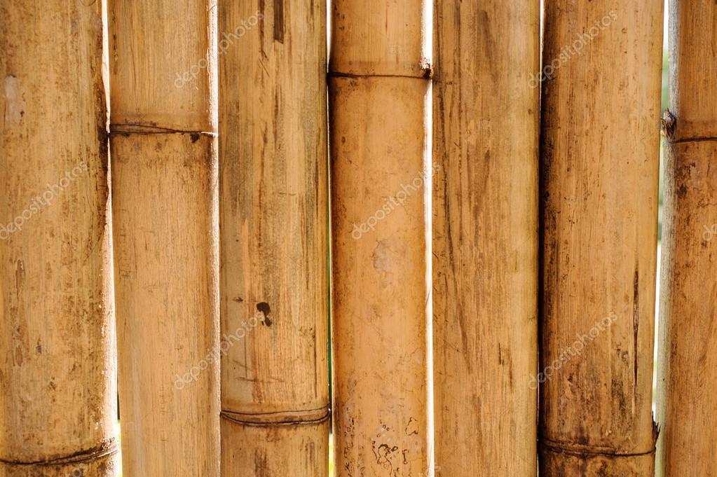 Fondo De La Cerca De Bambu Amarillo Seco Foto De Stock C Fesenko - Bambu-seco