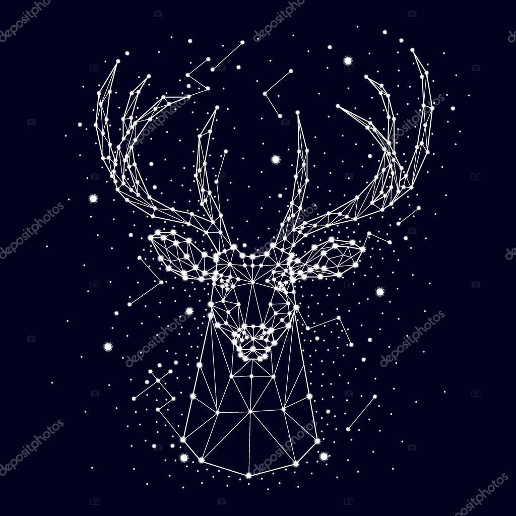 constelación, venado, vector — Archivo Imágenes Vectoriales © irkast ...