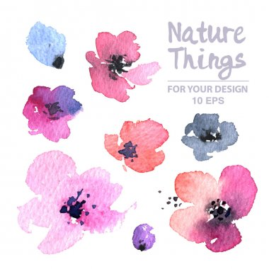 Vector Floral Collection of Painted poppies. Watercolor Vector Flowers set. Spring design for invitation, wedding or greeting cards clip art vector