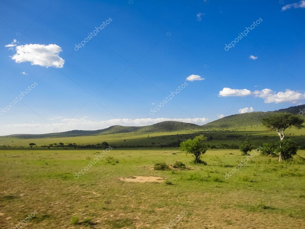 Réserve Nationale De Masai Mara Au Kenya Photographie Ammonite