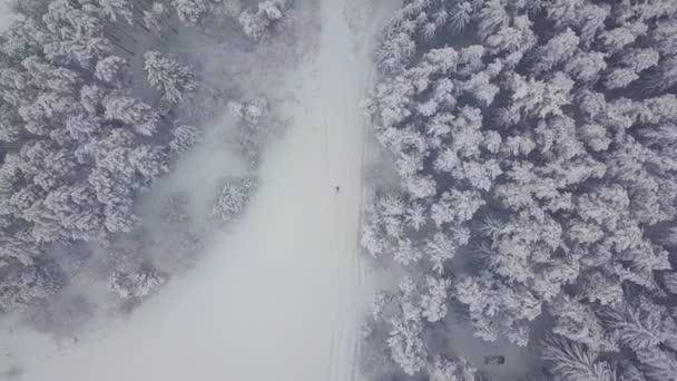 Bezstarostná mladá žena mávající rukama a nohama ve sněhové závěji. Angel