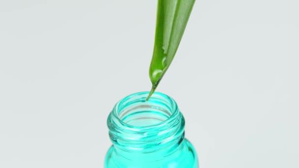A csepp legurul a zöld levélről, és közvetlenül az üvegbe vagy üvegbe csöpög..