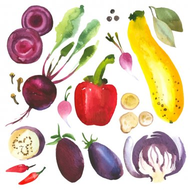 Watercolor vegetables and herbs.