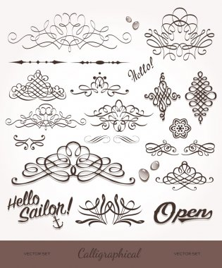 Vector set with calligraphic elements and page decoration.