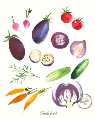 watercolor healthy food.