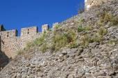 Fotografia Monastero dellordine di Chris - parete del fortress e il Ginger