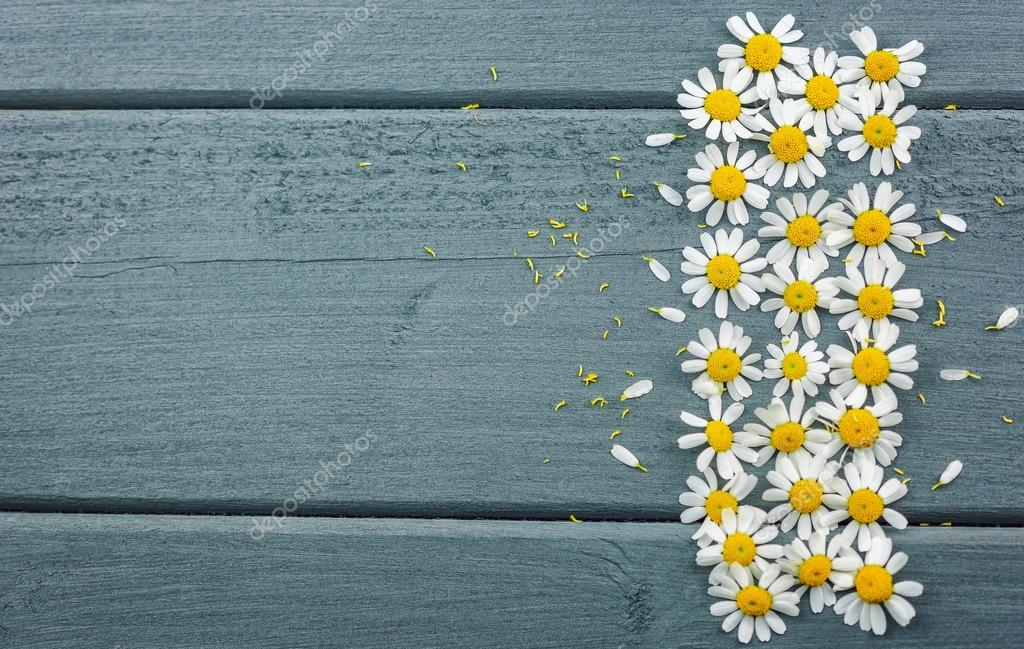Daisies on the table.