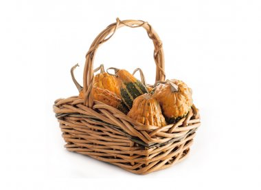 Different sorts of pumpkin in the basket isolated on the white background