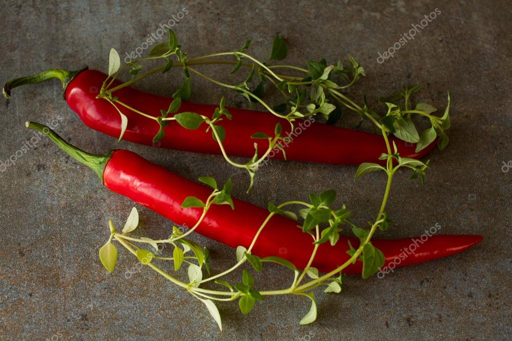 Chili peppers from Mexico on a gray background