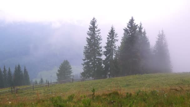 Horský Les mlha