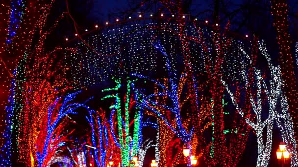 Via festivo illuminato ghirlande
