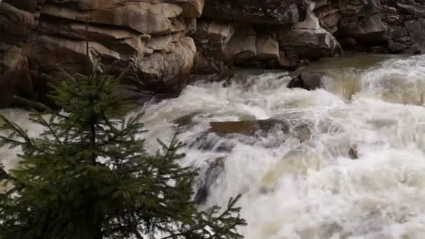 Mountain Stream with Waterfall