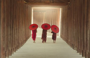 Life of a Buddhist monk in Burma.