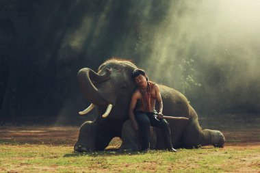 The man with elephant all sleep